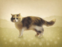 Illustration of a cat Royalty Free Stock Photos