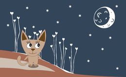 Illustration of a cat on a moonlit night Royalty Free Stock Image