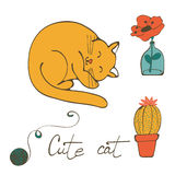 Illustration of a cat sleeping , flower in glass vase and cactus Stock Photography