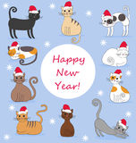 Illustration of cats in new year caps. Illustration of funny cats in new year caps on the blue background Royalty Free Stock Photos