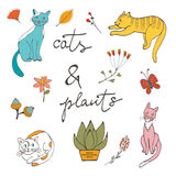 Illustration of cats plants flowers and twigs Royalty Free Stock Photo
