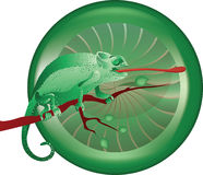 Illustration of chameleon  Royalty Free Stock Photo