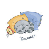 Illustration with a cheerful racoon sleeping on a pillows. Royalty Free Stock Images