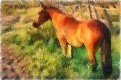 Illustration, cheval Image libre de droits
