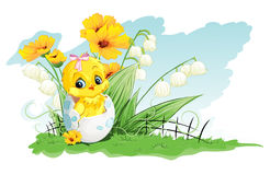 Illustration of chicken in the egg and lilies of the valley on a background of yellow flowers.  Royalty Free Stock Photography