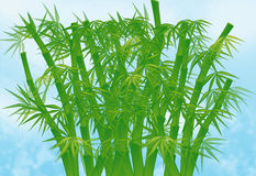 Illustration, Chinese Bamboo. Illustration of Chinese bamboo over blue sky Stock Images