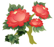 Illustration of Chinese Peony Royalty Free Stock Photography