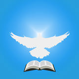 Illustration for Christian Community: Dove as Holy spirit and opened Bible. Royalty Free Stock Images