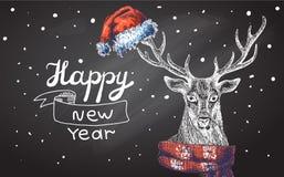 Illustration  Christmas deer Stock Photos