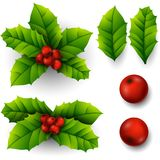 Christmas Holly Berry. Illustration of Christmas Holly Berry Royalty Free Stock Photo