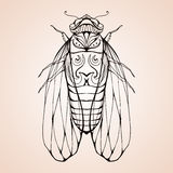 Illustration cicada  with boho pattern. Stock Photos