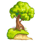 Illustration of a closeup tree Royalty Free Stock Photos