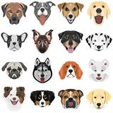 Illustration Collection Dogs Royalty Free Stock Photo