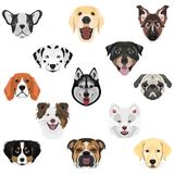 Illustration Collection Dogs Royalty Free Stock Images