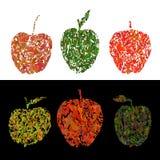 Illustration colorée de vecteur avec les pommes décoratives Photos stock
