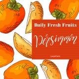 Illustration colorée de vecteur Conception de nourriture avec le fruit Croquis tiré par la main de kaki Produit frais organique p Images libres de droits