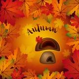 Illustration colorée de vecteur d'automne avec les feuilles et le champignon d'érable images stock