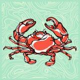 Illustration colorée du crabe 1 Photographie stock