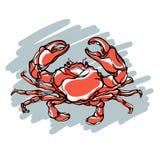Illustration colorée du crabe 2 Photo stock