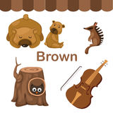 Illustration of  color brown group Royalty Free Stock Photos