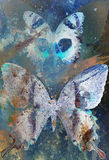 Illustration of a  color butterfly, mixed medium. Stock Image
