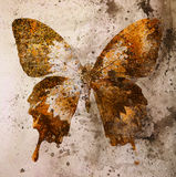 Illustration of a color butterfly, mixed medium, vintage background. Royalty Free Stock Images
