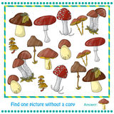 Illustration with color mushrooms Royalty Free Stock Photos