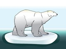 The illustration of a colored polar bear on ice in the Arctic. Animal cartoon drawing illustration. EPS 10 royalty free illustration