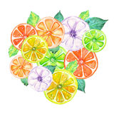 Illustration with colored watercolor candied fruits Stock Images