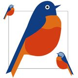 Illustration of colorful bird vector illustration