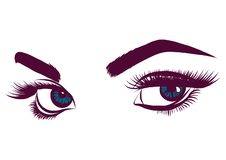 Illustration of colorful blue woman s eyes. Eyes of women vector illustration royalty free illustration