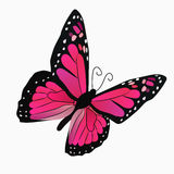 Illustration of a colorful butterfly. Very high quality original trendy vector illustration of a colorful butterfly Royalty Free Stock Images