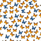 Illustration of a colorful butterfly. Very high quality original trendy vector seamless pattern with colorful butterfly Stock Photos