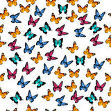 Illustration of a colorful butterfly Royalty Free Stock Image