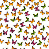 Illustration of a colorful butterfly Stock Photos
