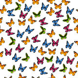 Illustration of a colorful butterfly Royalty Free Stock Images