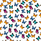 Illustration of a colorful butterfly. Very high quality original trendy vector seamless pattern with colorful butterfly Royalty Free Stock Photography