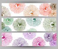 Illustration  of colorful flower on white background brochure template. Stock Photos
