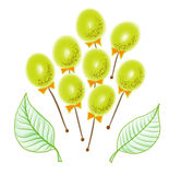 Illustration of colorful olives or grape on sticks with bow Stock Images