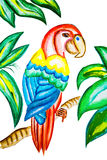 Illustration of colorful parrot in green leaves Stock Image