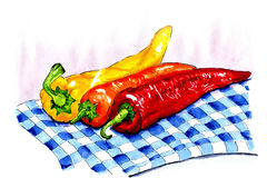 Illustration of colorful peppers Stock Image