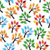 Tree seamless pattern Royalty Free Stock Photos