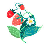 Illustration of colorful tasty strawberries Stock Photos