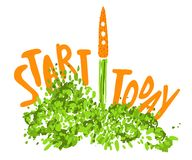 Illustration of the concept of a healthy lifestyle. Carrots with a halms, taking off like a rocket with lettering about Royalty Free Illustration