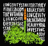 Illustration of the concept of a healthy lifestyle. Carrots with a halms, taking off like a rocket with lettering about Stock Illustration