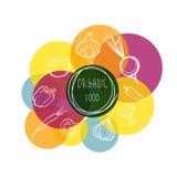 Illustration conceptuelle de griffonnages de fruits et légumes sains organiques pour votre conception Photos libres de droits