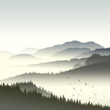 Illustration of coniferous forest on hills in fog. Square illustration morning misty coniferous forest on hills in fog with flock of birds Stock Photography
