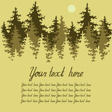 Illustration of coniferous forest with a place for Royalty Free Stock Photography