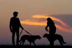 Couple with dogs at sunset. Illustration of couple with dogs at sunset Stock Photo