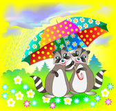 Illustration of couple of raccoons holding umbrella. Royalty Free Stock Photography